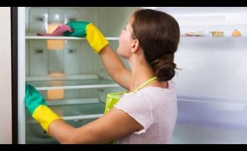 Плесень в холодильнике: причины и способы устранения